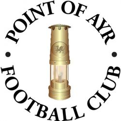 Point of Ayr Vets