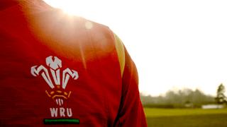 Wales v England RWC2015 at ODP
