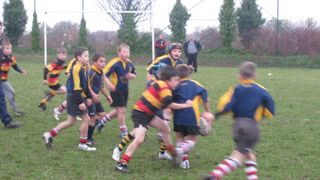 SAS Under 9'S Rugby Mini Festival Whitstable 06/11/11