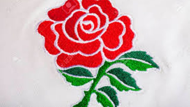 Sunday 25th October - England vs the Barbarians