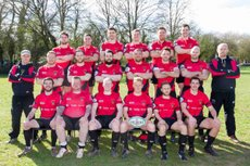 Stags XV