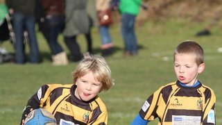 U7 8th December photos now available