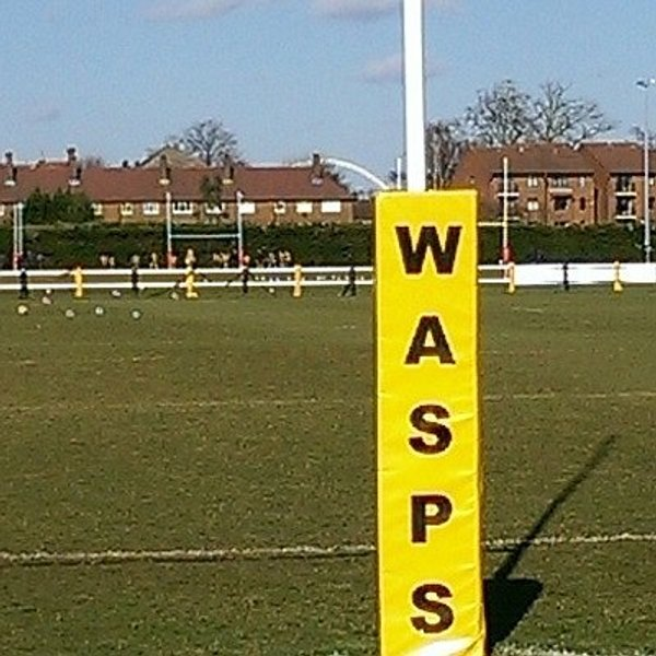 Wasps FC 1st team pitch