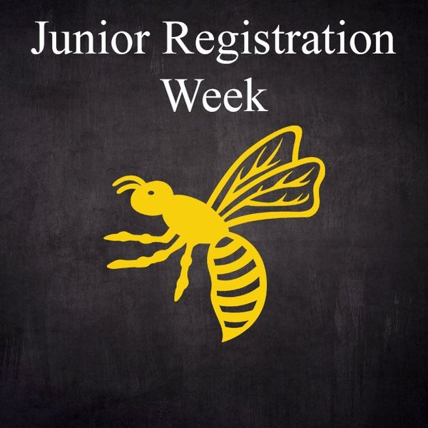 Wasps FC Junior Registration