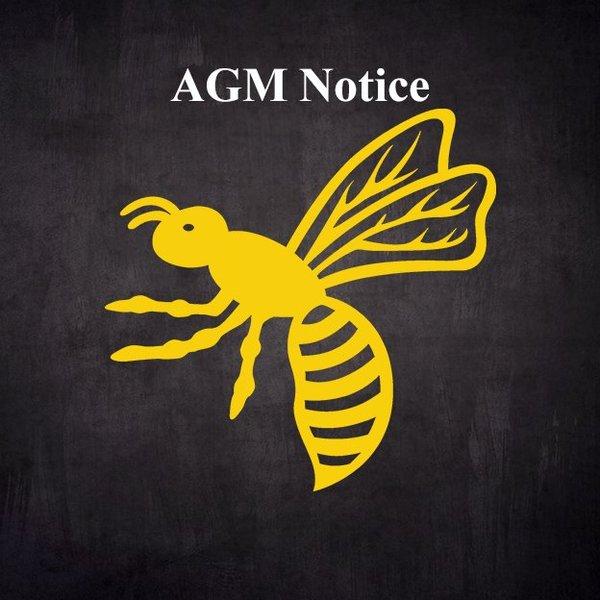 Wasps FC AGM