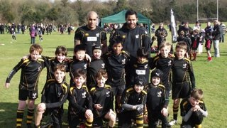 WASPS A  19   - LONDON WELSH A - 7