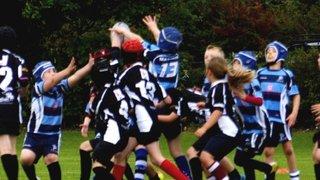 Chester Gladiators v Flintshire Falcons