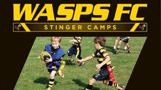 Stinger Camps