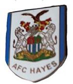 AFC Hayes  Lapel Badges