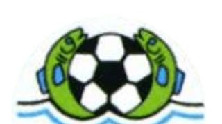 Elmore AFC v Appledore AFC
