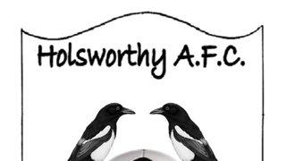 Elmore v Holsworthy