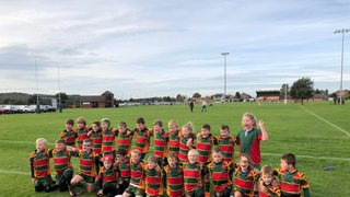 Selby Under 8's vs Ripon