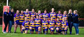 Ladies XV