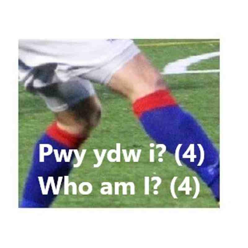 PWY YDW I ? / WHO AM I? (RHAN 4 / PART 4)