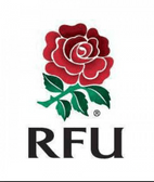 England Rugby Survey