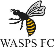 Wasps FC Annual General Meeting 2019