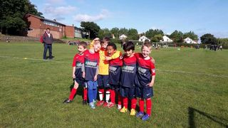 Vipers (Under 11's)