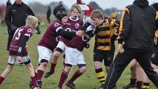 Hinckley defeat County Champions