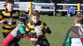 Wasps U9 A and B teams go undefeated