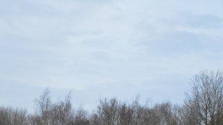 NMRFC 1XV vs Norwich Union 1XV (12/01/2019)