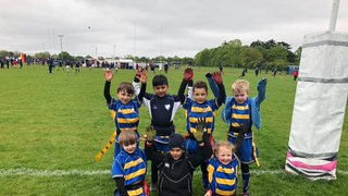 Chipstead U8s runners up at Effingham and Leatherhead Festival.