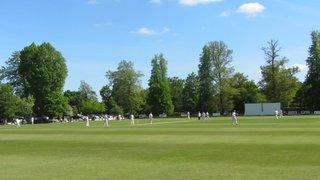 Falkland Cricket Club, Berkshire images