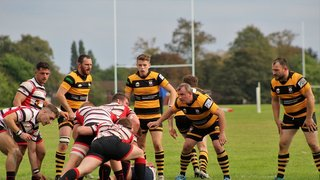 MOSELEY OAK 1ST XV vs STAFFORD 1ST XV. 5TH OCTOBER 2019. LEAGUE GAME.