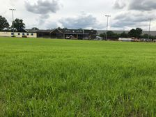 Ground updates: Stand and pitch