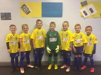 Under 7s Bees