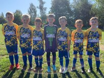 Under 8s Bees