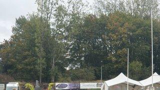 Woodbridge Festival