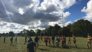 Walden win against Westcliff 53-12