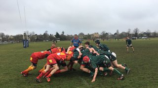 U14's beat Cambridge 36-10 in the cup