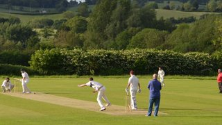 2nd XI fall to experienced opposition