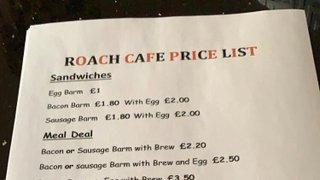 Roach News