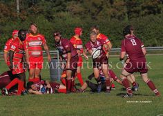 Swans take on Puddletown Rfc Saturday 20th Oct kick off 3pm