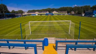 Lengthy Trip Awaits the Gingerbreads