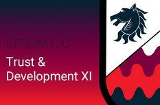 Trust & Development XI