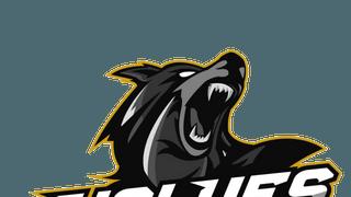 Wolves U11