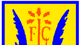 Lancing FC Youth - New Website