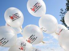 Board donation kick-starts C-R-Y fundraising