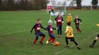 Stags Under 7's v Google Town Tigers 12.01.19