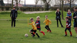 Goole Town Tigers JFC Blacks v Monk Fryston United under 7's  23.03.19