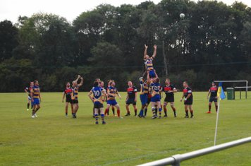 Up for the line out