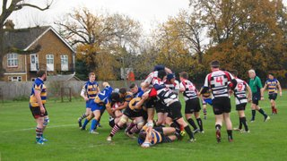 St Albans 2nd XV v Harpenden 2nd XV