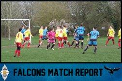 Falcons beaten by Pinewood