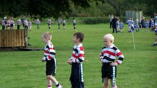 Minis at Tynedale 2006/07