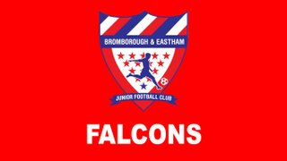 Falcons (Under 8's)