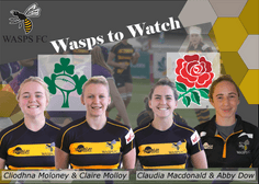 Four Wasps on International Duty for November Tests