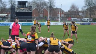 Wasps seal six-try victory over rivals Richmond